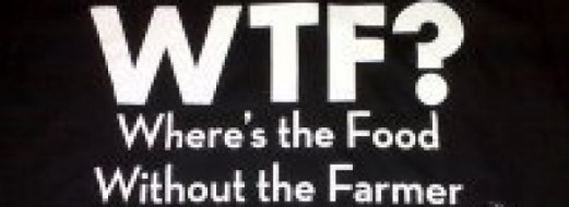 cropped-wtf2.jpg